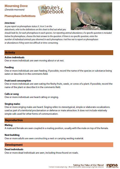 Sample Animal Phenophase Definition Sheet