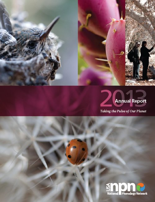 USA-NPN 2013 Annual Report Cover