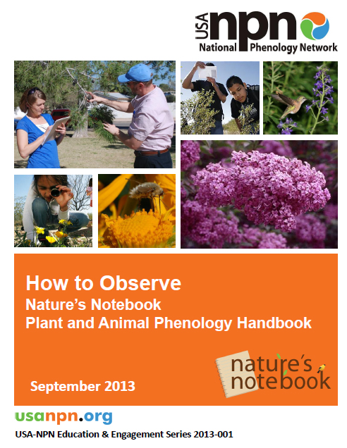 How to Observer Handbook cover image